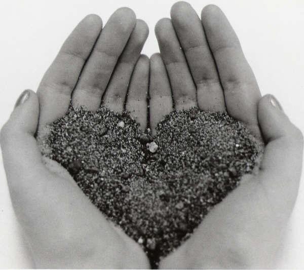 Heart in my hands image