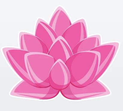Zen View App