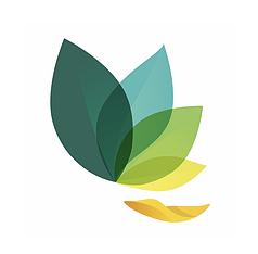 Oak Meditation and Breathing App